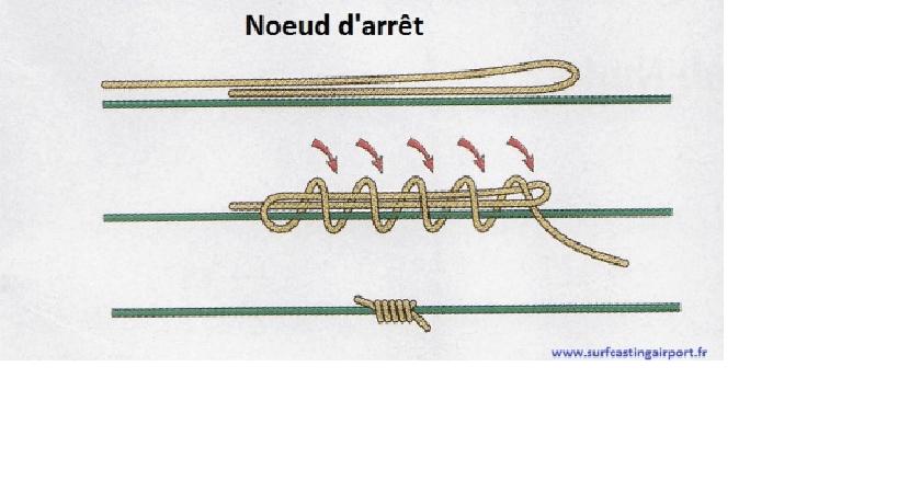 noeud-darret